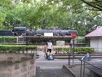 080809世田谷公園�F.jpg